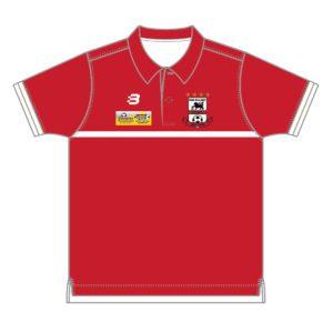 VL87175- PHEJSC - Polo Shirt - mens - front